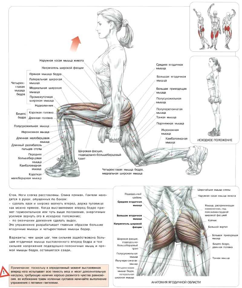 программа упражнений для похудения в ногах дома